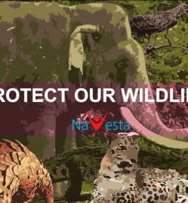 Navesta_Wildlife_Protection